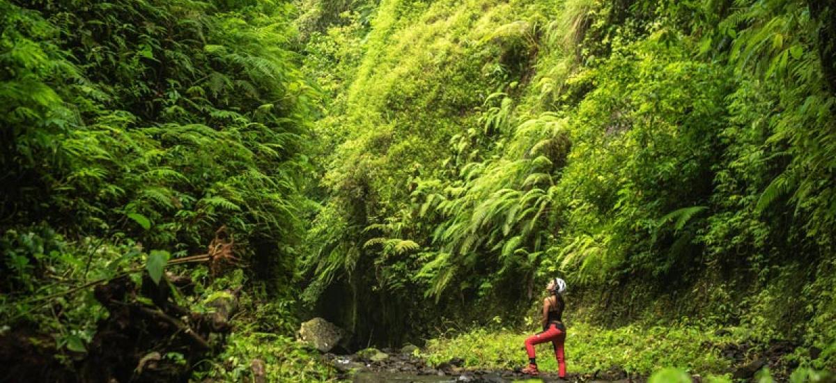 Arjuna Gorge Walk