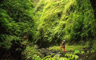Aling Gorge