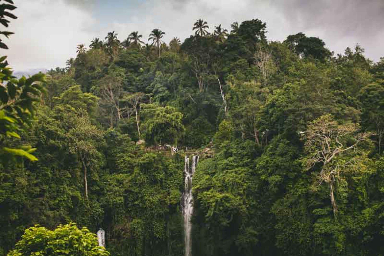 Sekumpul Bali – The Breathtaking Complex of Seven Waterfalls