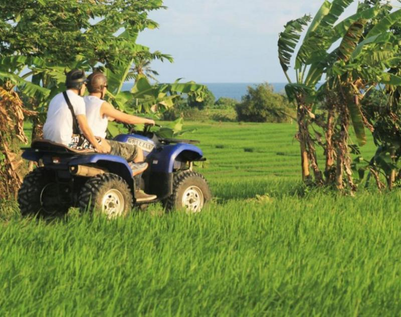 ATV Adventure in Bali Rice Paddies