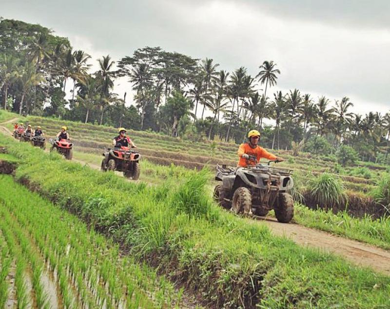 ATV Adventure in Rice Paddies of Bali
