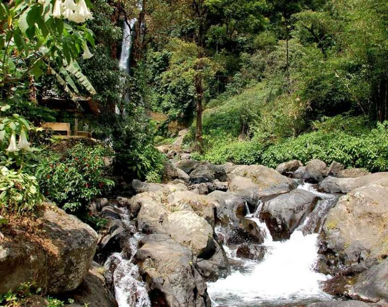 Bali Nature and Experience Tour