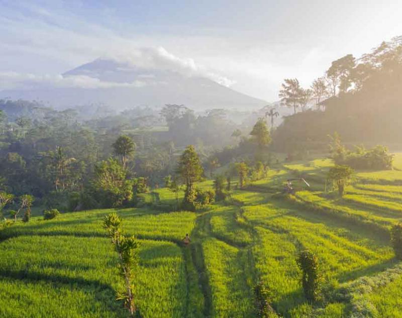 Best Bali Destination