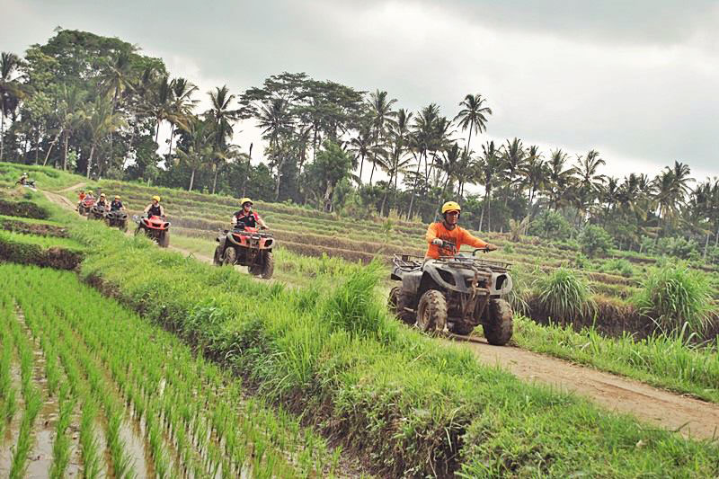 ATV Adventure in Rice Paddies of Bali