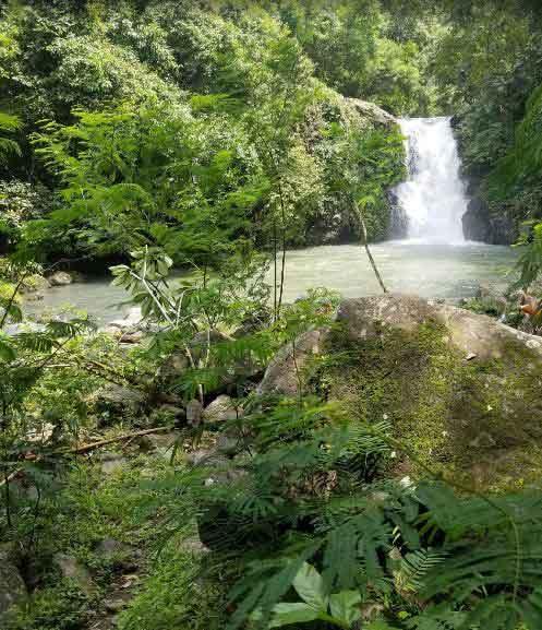 Pucuk Waterfall Bali