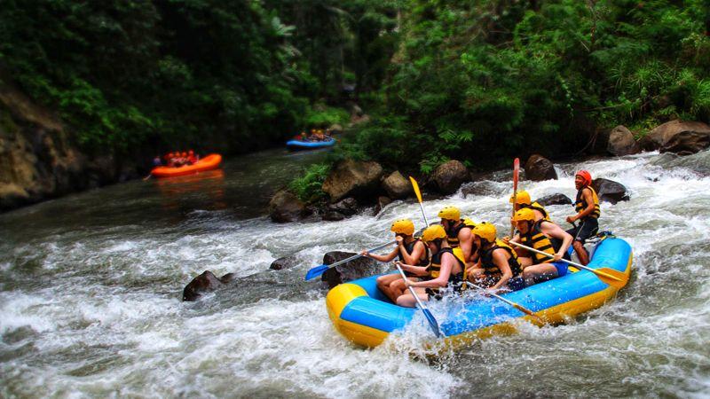 Ubud Ayung River
